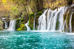 Arrow bamboo waterfall jiuzhaigou scenic Royalty Free Stock Images