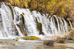Arrow bamboo waterfall jiuzhaigou scenic Royalty Free Stock Image