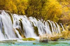 Arrow bamboo waterfall jiuzhaigou scenic Royalty Free Stock Photo