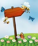 An arrow board with insects Royalty Free Stock Photo