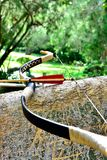 Arrow and Bow resting on a tree Royalty Free Stock Images