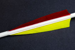 Arrow feathers different colors Stock Images