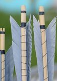 Arrow Fletchings Royalty Free Stock Images
