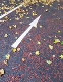 Arrow - Go straight - Street signs on the asphalt. London, Europe royalty free stock image