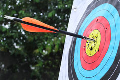 Arrow hit target in center. Royalty Free Stock Photography