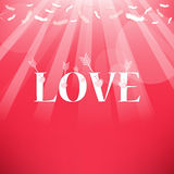 Arrow and Love Feathers from the sky Stock Photography