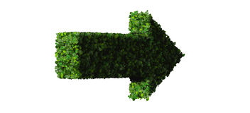 Arrow made from green leaves. 3D render. Beautiful inscription made of green leaves on gradient background Stock Image