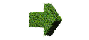 Arrow made from green leaves. 3D render. Royalty Free Stock Photo