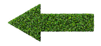 Arrow made from green leaves  on white background. 3D render. Stock Photography