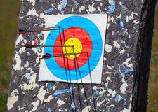 The arrow pierced the center of the paper target of concentric circles of different colors. Royalty Free Stock Image
