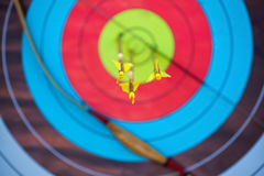 The arrow pierced the center of the paper target of concentric circles of different colors Royalty Free Stock Image