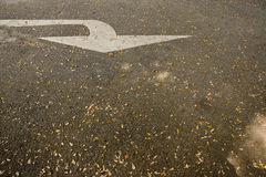 Arrow on the road with dried leaves, concept of business vision, Stock Photography