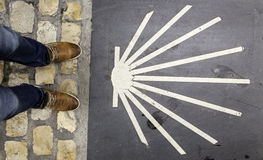 Arrow of the road of santiago. In building wall, sign and symbol Stock Photo
