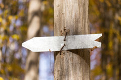 Arrow sign on a tree Stock Photography