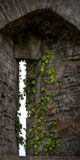 Arrow Slit in Castle Wall Royalty Free Stock Image