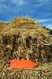 Arrow in the straw. A red, wooden arrow in the straw shows you the way Stock Photography