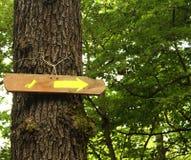 Arrow on tree Stock Image