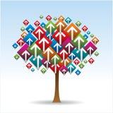 Arrow tree plant. An image of a arrow tree plant stock illustration
