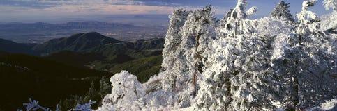 Arrowhead λιμνών το χειμώνα, Καλιφόρνια Στοκ Εικόνες