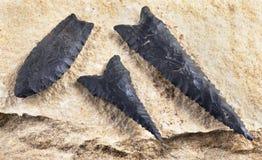 Arrowheads του Dalton Paleo Στοκ φωτογραφία με δικαίωμα ελεύθερης χρήσης