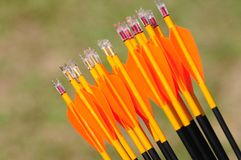 Arrows for archery. Arrows used for the sports archery royalty free stock photos