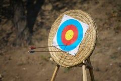 Arrows in archery target. On archery range Royalty Free Stock Image