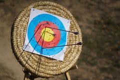 Arrows in archery target. On archery range Royalty Free Stock Photo