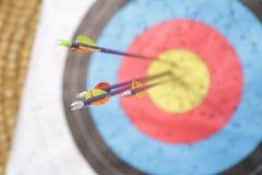 Arrows in archery target. On archery range Stock Photos