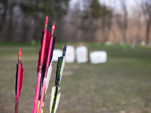 The arrows for the bow. Stock Photography