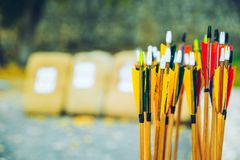 Arrows bows and targets. Outside sport challange Royalty Free Stock Image