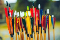 Arrows bows and targets. Outside sport challange stock image