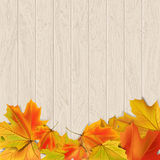 Autumn background. With autumn leaves on wooden surface, vector illustration Stock Images