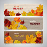 Autumn banners. Set of autumn banners with leaves on wooden surface Royalty Free Stock Image