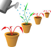 Arrows in flowerpots. Stock Photos