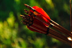 Arrows in the quiver on green background. Concentration, target, success concept. Royalty Free Stock Photos