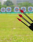 Arrows and targetboard. Arrows before five target boards in the distance Royalty Free Stock Photos