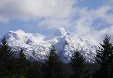 Arrowsmith góra. fotografia royalty free