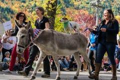 Arrowtown, Νέα Ζηλανδία - 23 Απριλίου 2016 φεστιβάλ φθινοπώρου Στοκ Φωτογραφία