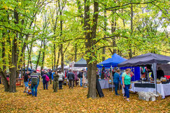 Arrowtown Autumn Festival na rua de Buckingham Foto de Stock Royalty Free