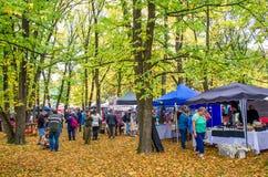 Arrowtown Autumn Festival sur la rue de Buckingham Photo libre de droits