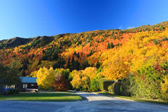 Arrowtown in South Island New Zealand. Stock Image