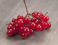 Arrowwood berries. Bunch on a wooden table Stock Photos