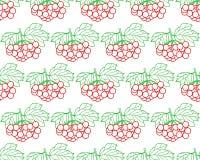 Arrowwood fruits contour pattern Stock Photos