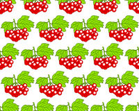 Arrowwood fruits pattern Royalty Free Stock Image