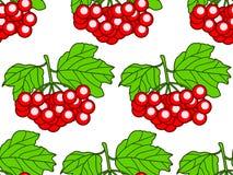 Arrowwood owoc wzór Obraz Royalty Free
