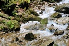 Arroyo del bosque que corre abajo de las colinas cubiertas de musgo imagen de archivo