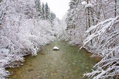 Arroyo del invierno Foto de archivo libre de regalías