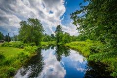 Arroyo del lechón, en castaño, New Hampshire Fotografía de archivo libre de regalías