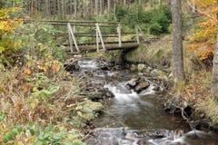 Arroyo en el bosque del otoño Fotos de archivo libres de regalías