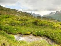 Arroyo en el prado fresco de las montañas, picos nevosos de las montañas en fondo Tiempo brumoso y lluvioso frío en montañas a fi Imagen de archivo libre de regalías